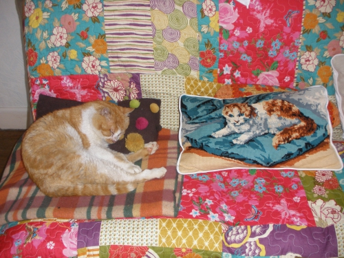 chat, coussin, imitation,