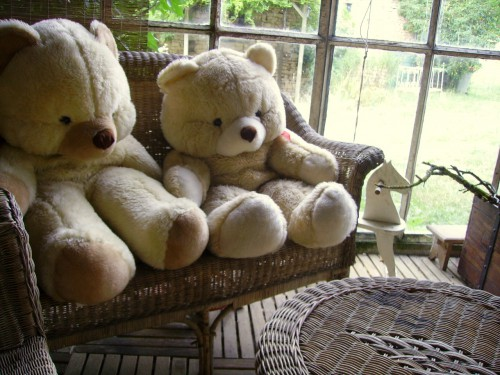nounours, teddy, bear,